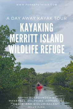 Our Florida kayak tour took place in the Merritt Island National Wildlife Refuge, located just outside of Titusville, along the Atlantic Ocean. Florida Travel, Florida Beaches, Travel Usa, Everglades Airboat, Airboat Rides, Merritt Island, Hiking Photography, Kayak Tours, Travel Activities