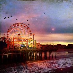 My winning photo in the Pacific Park instagram contest  Photo Credit: Denise Taylor