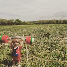 Wanderingweightlifter (@wanderingweightlifter) • Instagram photos and videos