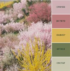 Brand Better: 12 modern color palettes to steal not always so easy pick colors for your brand, so taken some of the guesswork out of it for you. Here are 12 modern, sophisticated color palettes you can use for all your brand needs. Color Schemes Colour Palettes, Earthy Color Palette, Colour Pallette, Color Palate, Color Combos, Pastel Color Palettes, Adobe Color Palette, Website Color Palette, Summer Color Palettes
