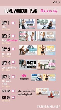 15 Min Workout, Sweat Workout, Workout Days, Workout Videos, Weekly Workout Plans, At Home Workout Plan, At Home Workouts, Intense Workout Plan, Six Pack Body