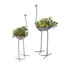 This recycled metal ostrich garden stand uses your plants to create its living plumage. Handmade in Kenya with washers, nuts, and other salvaged metal. Recycling, Garden Stand, Large Planters, Succulents In Containers, Gardening Supplies, Garden Gifts, Living At Home, Garden Accessories, Yard Art
