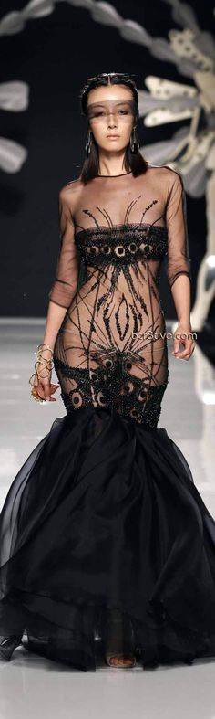Gattinoni Spring Summer 2012 Couture....this guy had too much testosterone when he designed this.