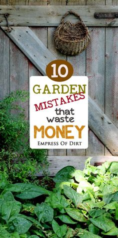 We've all done these things—gardening mistakes, bloopers, or blunders that may be relatively harmless except they waste money. And, if you're like me, you want your garden budget to stretch as far as possible each year so that each new season is the best it can be.   See if you have made any of these mistakes ( I have!) and better yet, perhaps you can avoid them.