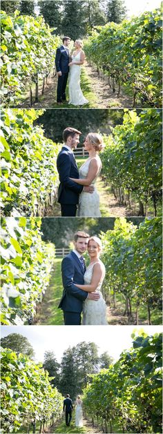 Read more about this Humanist Copdock Hall wedding if you're thinking of something different. Fun, relaxed humanist wedding at Copdock Hall Barn in Suffolk My Photos, Couple Photos, Happy Together, Wedding Portraits, Ted, Vineyard, Wedding Venues, Groom, Bride