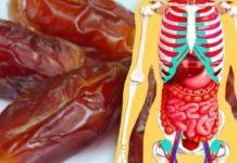 Τι θα Συμβεί στο Σώμα σας αν Τρώτε 3 Χουρμάδες την Ημέρα για Μία Ολόκληρη Εβδομάδα Ronald Mcdonald, Bacon, Food, Vitamins, Essen, Meals, Yemek, Pork Belly, Eten