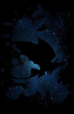A night flight together<br/> <br/> ( toothless - hiccup - dragon - trainer - how - to - train - your - dragon - fury )