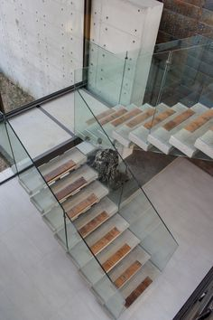 Residential & Commercial Architects - Nico van der Meulen Architects, we design innovative, luxurious homes tailored to the tastes and needs of our clients. Interior Staircase, Staircase Railings, Stairways, Railing Design, Staircase Design, Foyers, Glass Stairs, Floating Staircase, Glass Balustrade
