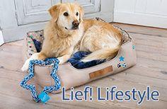 Hundezubehör & Hundebedarf online kaufen (Page 14) | Trendy Haustiershop