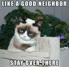 Yes please! Damn neighbor!!! Makes me want to never leave the house!