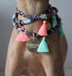 Best Pics accesorios para perros Dog Collars Suggestions One of the most vital aspects of your parrot's layette is utilize for your pooch and also your four-legged pal. Diy Dog Collar, Collar And Leash, Pet Collars, Girl Dog Collars, Dog Accesories, Pet Accessories, Dog Shop, Pet Fashion, Dog Bandana