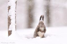 Photograph Snow Child by Masatsugu Ohashi on 500px