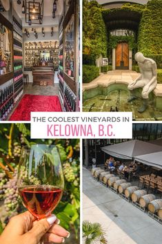 These wineries near B. take wine tasting to a whole other level, by pairing their on-point pinots and robust rosés with stunning scenery, scientific experiments and crazy stories. Top Travel Destinations, Places To Travel, Things To Do In Kelowna, West Coast Canada, Canadian Travel, Visit Canada, Italian Wine, Crazy Stories, Wine Tasting