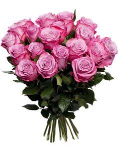 trandafiri roz - Căutare Google