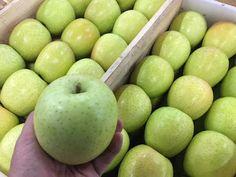 青果物の流通  ソーシャルメディアアグリ「地場活性化」のために: りんごの王様!