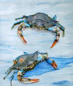 Theresa Ferguson   WATERCOLOR Crab Art, Fish Art, Watercolor Ocean, Watercolor Paintings, Watercolors, Crab Painting, Louisiana Art, Fish Illustration, Illustrations
