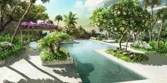 Renderings of landscape design at new Grove at Grand Bay in Coconut Grove, FL.  Purple flowers add a touch of color.
