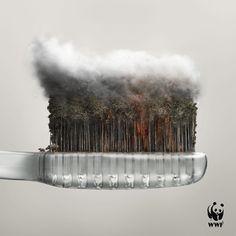 Historicamente no mundo da propaganda, temos campanhas memoráveis contra queimadas e contra o fumo, com conceitos muito interessantes e bem trabalhados. Desta vez o pessoal da agência Dentsu Mobius…