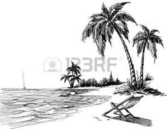 palm tree: Summer beach pencil drawing
