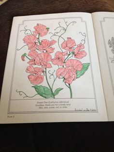 Completed on January 2016 from the Language of Flowers Coloring Book Colouring Pages, Coloring Books, Language Of Flowers, Purple, Pink, Blue, January, Quote Coloring Pages, Vintage Coloring Books