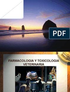 1.-Historia de La Farmacologia Theatre, Exterior, Minecraft, Paper, Drama Activities, Theatre Games, Drama Class, Role Play, Gross Motor