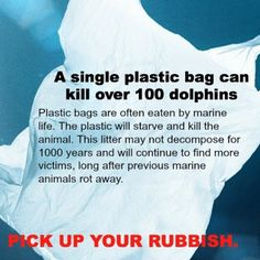Pick up your rubbish to save marine mammals!  Birds dying with bodies full of plastic mistaken for food.