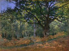 peira:  Claude Monet: The Bodmer Oak, Fontainebleau Forest (1865) via Gandalf's Gallery