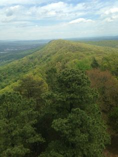 View from fire tower of Bays Mountain