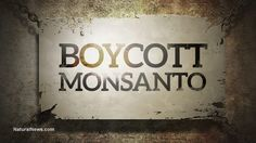 Sorry, Monsanto. Hopefully karma for Monsanto's lack of compassion for humanity will continue catching up with them... http://www.naturalnews.com/051380_Monsanto_GMOs_Roundup.html