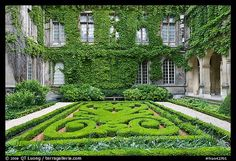Formal garden in courtyard of hotel particular -- pre-revolution private homes inside Paris.