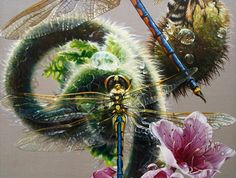 Perpetual movement growth strength peace and harmony are brought into effect by the spiraling koru. Beloved of the New Zealand Maori the unfurling frond of the fern leads back to the beginning perfection and an awakening. Australian Emerald with Koru 2011 oil on linen 96 x 126cm http://ift.tt/2tw3w8c - #koru #fernfrond #dragonfly #spiral #australianemerald #hemicorduliaaustraliae #australianart #australianartist #floriography #symbolism #oilonlinen #oilpainting #melbourneartist #melbourneart…
