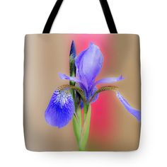 Spring Iris Tote Bag featuring the photograph Spring Iris by Debra Martz