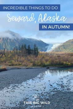Incredible Things to Do in Seward Alaska (in September!) Incredible Things to Do in Seward Alaska (in September! Alaska Travel, Travel Usa, Travel Tips, Canada Travel, Travel Guides, Travel Photos, Gulf Of Alaska, Alaska Trip, Alaska Sealife Center