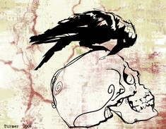 The Crow and The Skull by ATurner-Design.deviantart.com on @DeviantArt