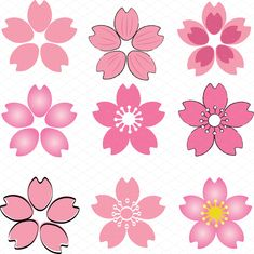 Set of Pink Cherry Blossom Graphics Pink Cherry Blossom or Sakura petal lobe set in many kind of style in both drawing style and progra by PeoGeo Creative Cherry Blossom Drawing, Cherry Blossom Petals, Blossom Trees, Pink Flowers, Paper Flowers, Sakura Haruno, Easy Drawings, Japanese Art, Creative