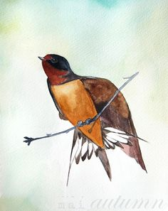 Swallow - New Illustration from Mai Autumn - Fine art print available in several sizes