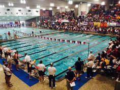 ohsaa state, branin natatorium, 2014 ohsaa, swim dive, dive championship, state swim, canton event