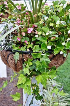 flower baskets on wooden posts