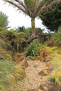 Mix of hard and soft landscaping Pond Design, Garden Landscape Design, Garden Landscaping, Back Gardens, Small Gardens, Planting Plan, Small Ponds, Garden Images, Evergreen Shrubs