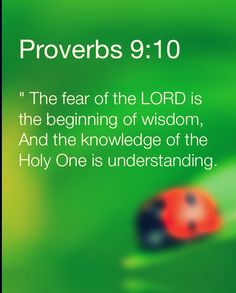 """The fear of The Lord is the beginning of wisdom: and the knowledge of the Holy One is understanding."" Proverbs 9:10"