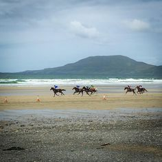 Picture gallery and video showing Ocean View Cottage and Louisburgh Horse Racing, Cottage, Ocean, Horses, Gallery, Beach, Water, Summer, Pictures