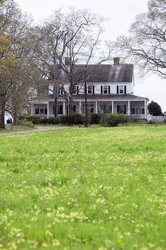 Darby Plantation ~ Edgefield, S.C. Built in the early 1800s, this house is built of local pine. The main rooms measure 20' x 20' with 12' ceilings. Built for Anne and Milledge Bonham, who served in the Mexican-American War, led the SC volunteer army in the Civil War and became govenor in 1862. The home was used to store many things from the Charleston Museum during the war. Since 1878, it has been owned by the Wise family.