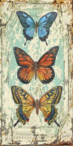 Lovely Butterfly Trio on Tin Tile Art Print by Jean Plout. All prints are professionally printed, packaged, and shipped within 3 - 4 business days. Choose from multiple sizes and hundreds of frame and mat options. Butterfly Painting, Butterfly Wallpaper, Butterfly Art, Butterflies, Decoupage Vintage, Vintage Art, Decoupage Tins, Tin Tiles, Butterfly Pictures