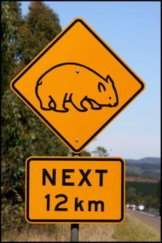 Australia has wombat crossing signs!!!!