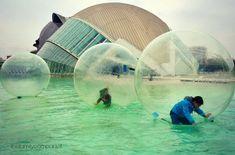 Valencia con bambini: itinerari e cose da vedere Valencia, New Journey, Andalusia, Family Travel, Beautiful Places, Building, Animals, Bari, Travelling