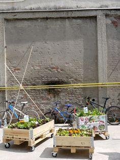 Urban gardening at Ventura Lambrate | Milan designweek 2015 #urbanjungle
