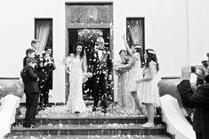 Wedding Confetti Bubbles and Flowers Confetti Photos, Wedding Confetti, Streamers, Balloons, Bubbles, Wedding Photography, Celebrations, Flowers, Weddings