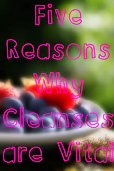 All Things Sara: 5 Reasons Why #Cleanses are #Vital