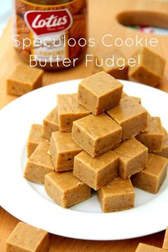 Speculoos Biscoff Cookie Butter Fudge! - A Delicious and Super Easy to make Fudge Recipe absolutely brimming with the delicious Speculoos/Biscoff flavour – Heaven!