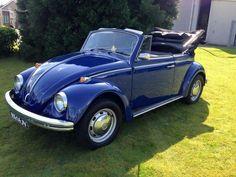 Volkswagen Convertible, Car Volkswagen, Vw Camper, Beetle Bug, Vw Beetles, Fiat 500, Vw Cabrio, Bug Car, Old Classic Cars